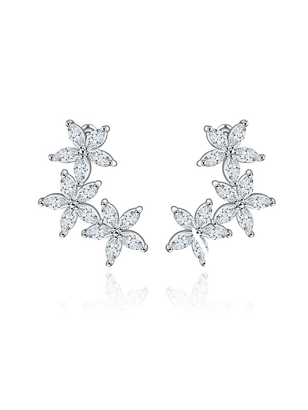 Beautiful Zircon With Cubic Zirconia Earrings For Bride